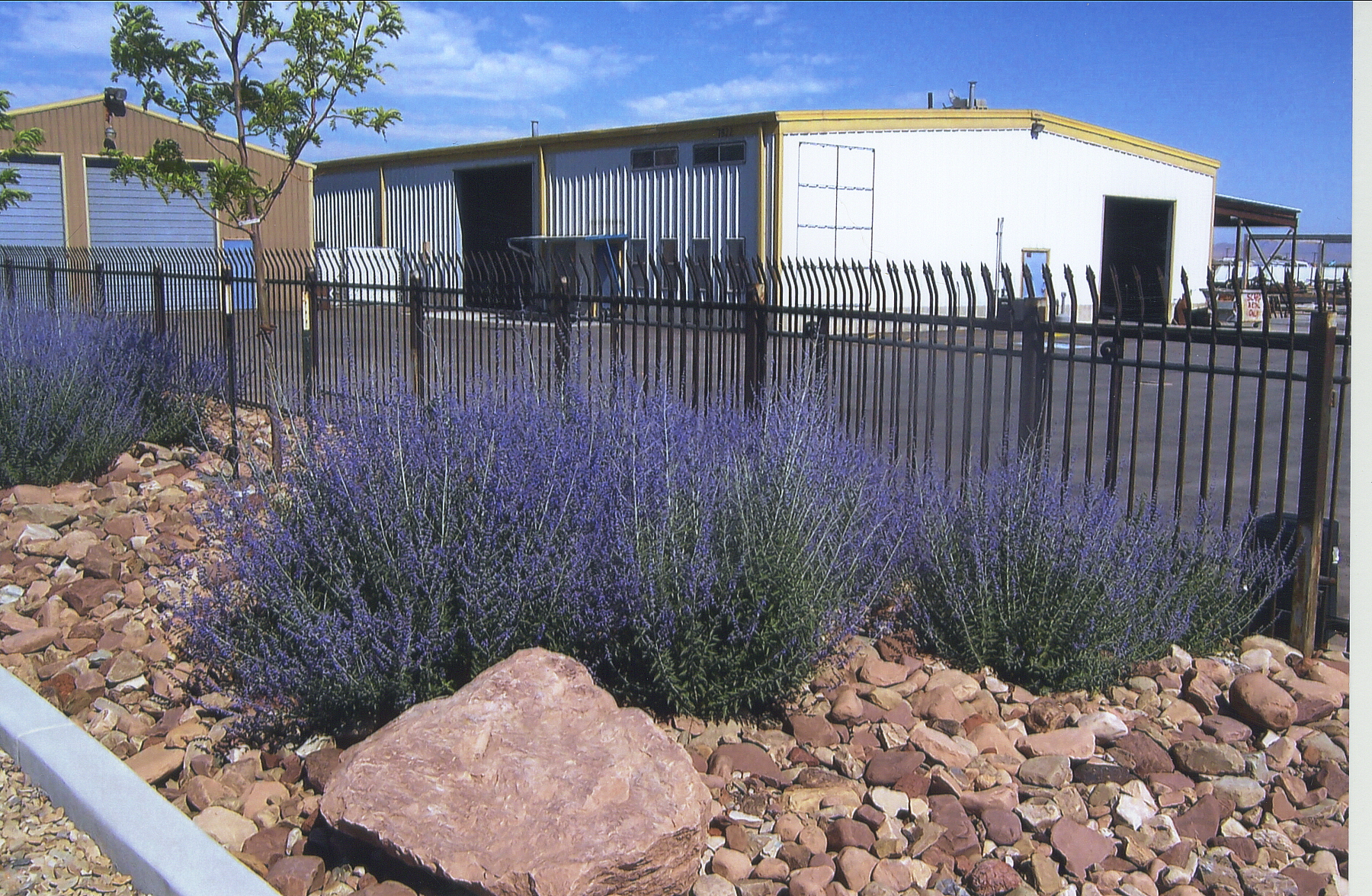 Xeriscaping Ridgeline Landscaping Salt Lake City